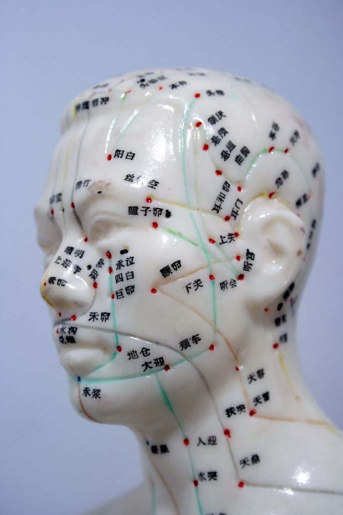 Acupuncture Point Model
