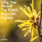 witch hazel for eczema, witch hazel and eczema, witch hazel on eczema-min