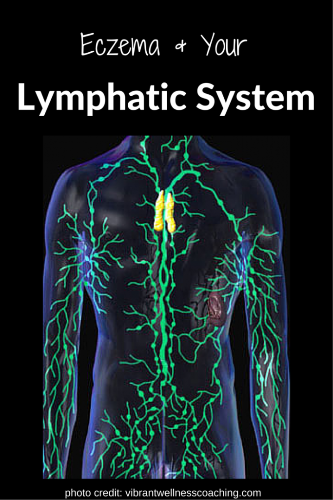 4 Tips To Drain The Lymphatic System Take Out The Bodys Trash