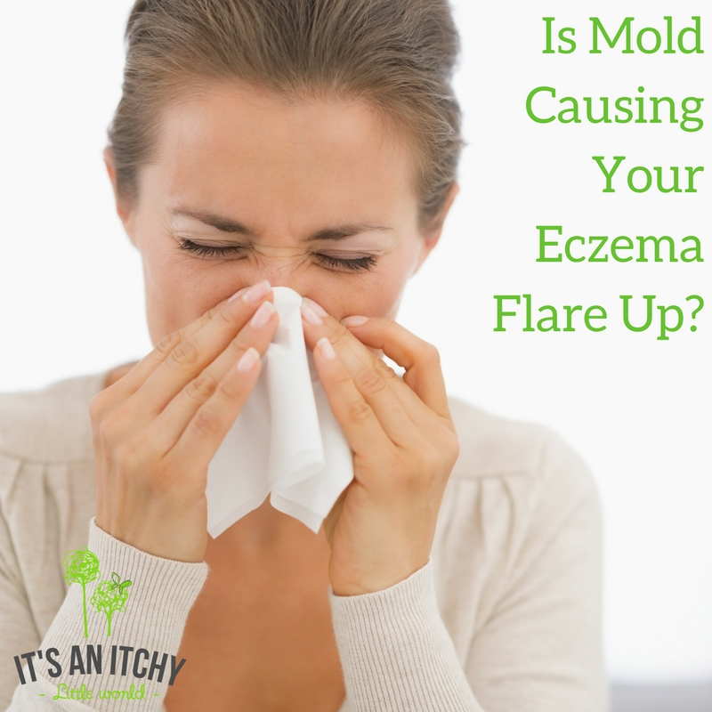 Your Eczema Flare Up, Is It Triggered By Mold?