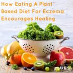 plant based diet (1)