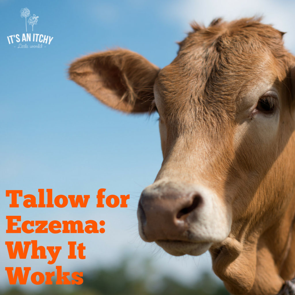 Tallow for Eczema